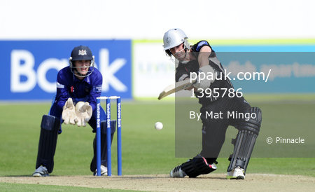 Gloucestershire v Somerset 260813