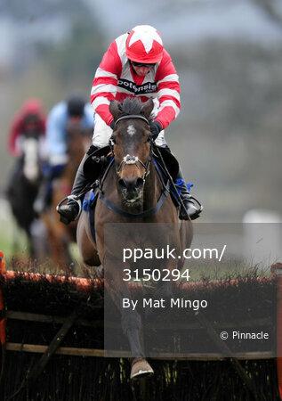 Taunton Races 280213