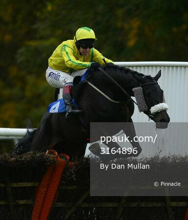 Taunton Races 281113