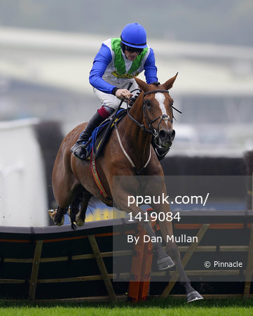 Newton Abbot Races 300913