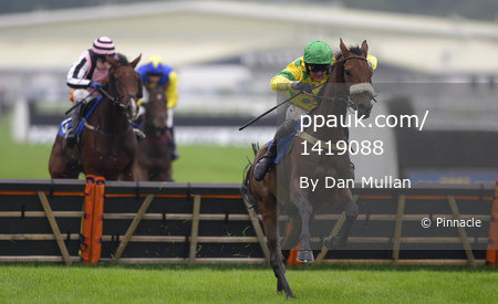 Newton Abbot Races 300913