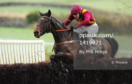 Point-to-Point Black Forest 291109
