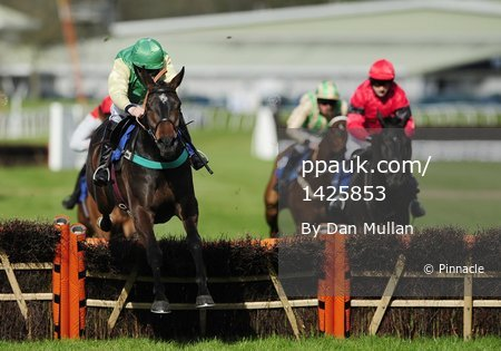 Newton Abbot Races 120412