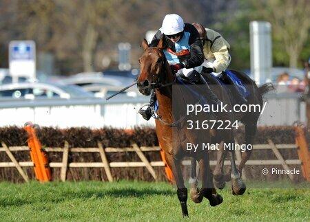 Newton Abbot Races 120412