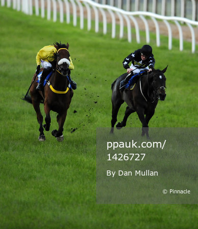 Newton Abbot Races 190612