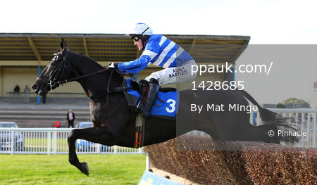 Newton Abbot Races 250414