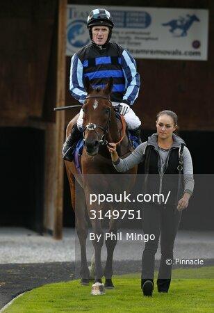 Newton Abbot Races 300814