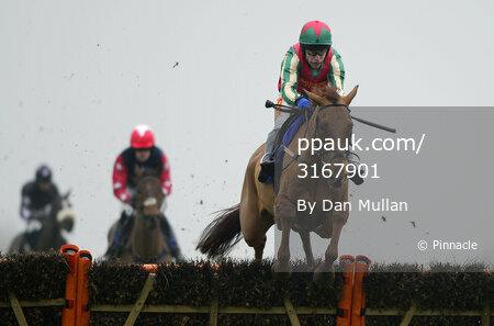 Wincanton Races 300114
