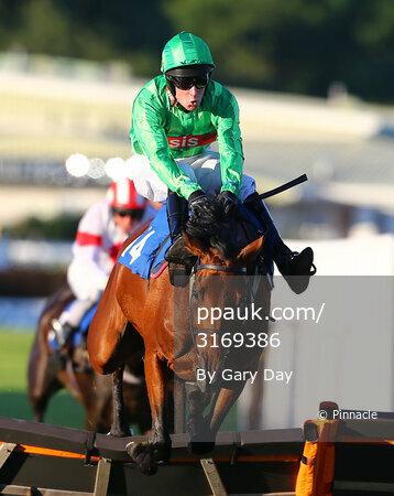 Newton Abbot Races 240614