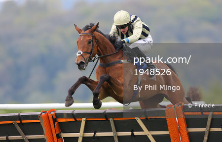 Taunton Races, Taunton, UK - 27 Apr 2017