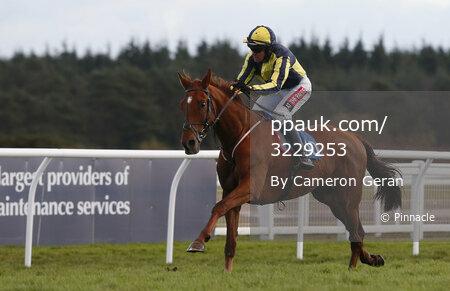 Exeter Races, Exeter, UK - 8 Dec 2017