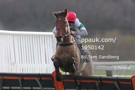 Exeter Races, Exeter, UK - 26 Nov 2017