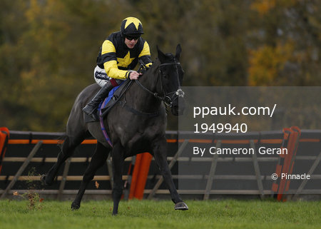 Taunton Races, Taunton, UK - 30 Nov 2017