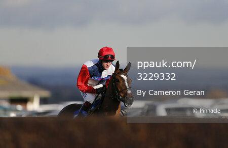 Taunton Races, Taunton, UK - 30 Nov 2017