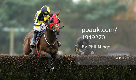 Exeter Races, Exeter, UK - 24 Oct 2017