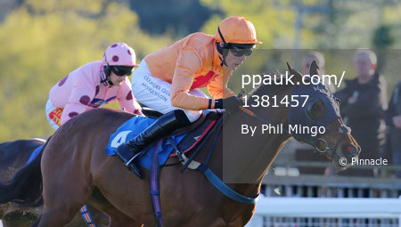 Exeter Races, Exeter, UK - 18 Apr 2017