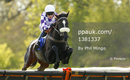 Taunton Races, Taunton, UK - 6 Apr 2017
