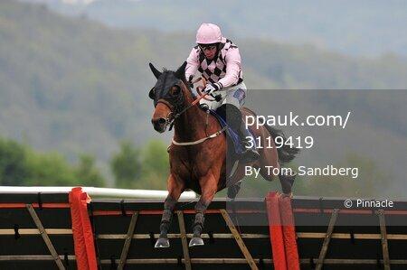 Taunton Races, Taunton, UK - 20 Apr 2017