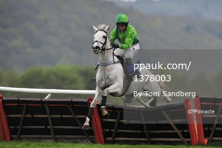 Taunton Races, Taunton, UK - 20 Apr 2017