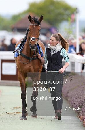 Taunton Races, Taunton, UK - 27 Apr 2017