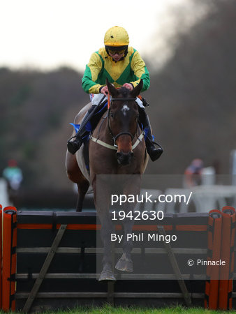 Exeter Races, Exeter, UK - 21 Dec 2017