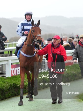 Taunton Races, Taunton, UK - 30 Dec 2017
