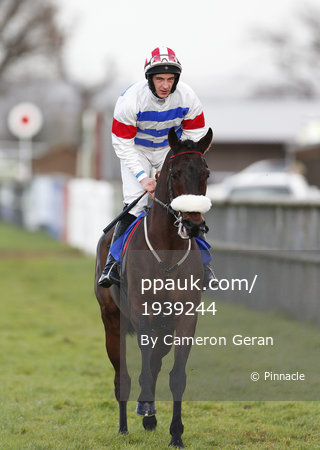 Taunton Races, Taunton, UK - 14 Dec 2017
