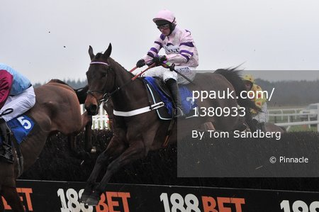 Exeter Races, Exeter, UK - 12 Feb 2017