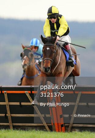 Taunton Races, Taunton, UK - 5 Feb 2017