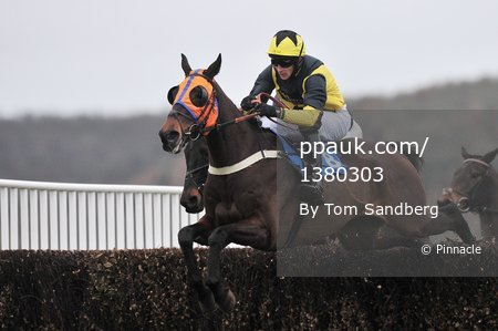 Taunton Races, Taunton, UK - 21 Feb 2017