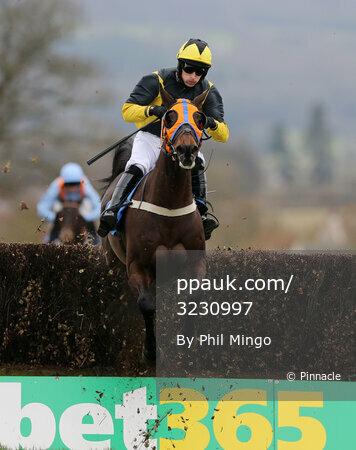 Taunton Races, Taunton, UK - 21 Feb 2017