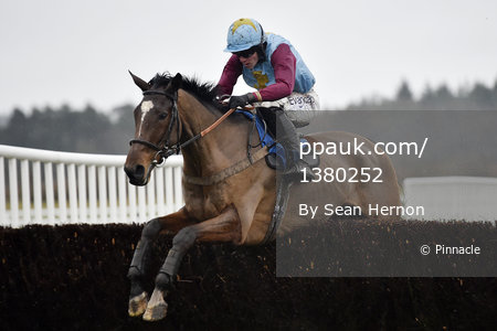 Exeter Races 010117