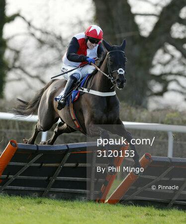 Taunton Races 110117