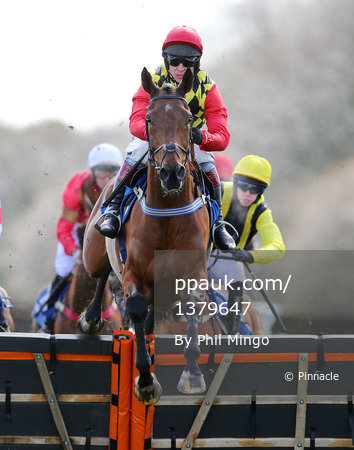 Exeter Races, Exeter, UK - 21 Mar 2017