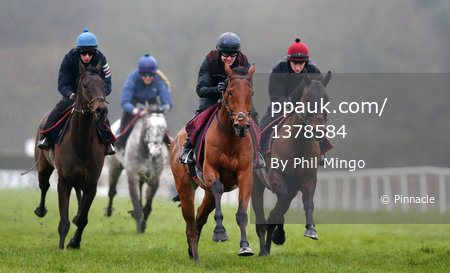 Exeter Races, Exeter, UK - 7 Mar 2017