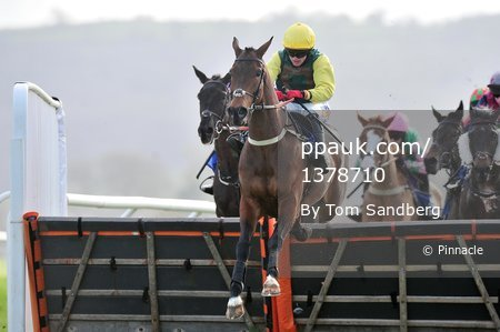 Taunton Races, Taunton, UK - 2 Mar 2017