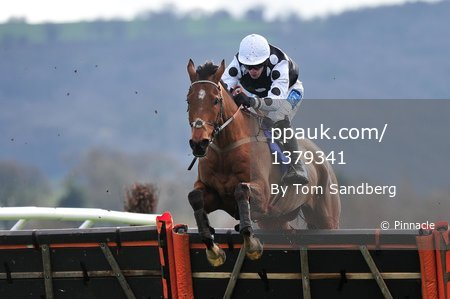 Taunton Races, Taunton, UK - 20 Mar 2017