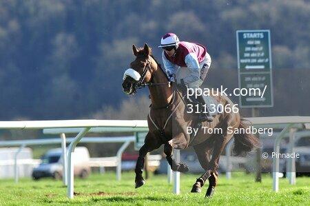 Taunton Races, Taunton, UK - 20 Mar 2017