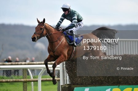 Taunton Races, Taunton, UK - 30 Mar 2017