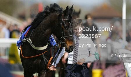 Taunton Races, Taunton, UK - 30 Mar 2017