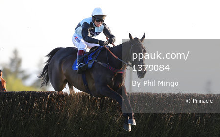 Exeter Races, Exeter, UK - 9 May 2017