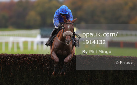 Exeter Races, Exeter, UK - 7 Nov 2017