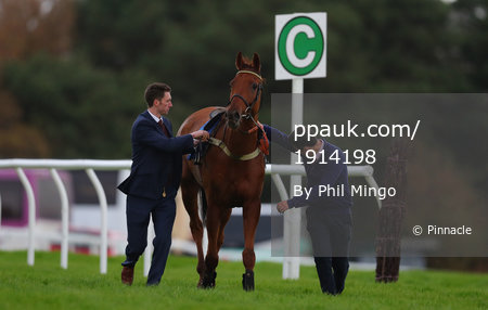 Exeter Races, Exeter, UK - 15 Nov 2017