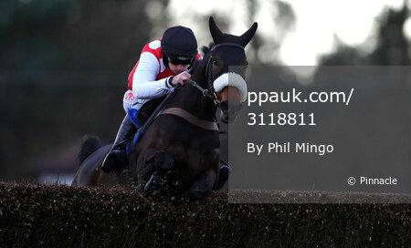 Exeter Races, Exeter, UK - 15 Nov 2017