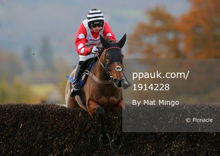 Taunton Races, Taunton, UK - 16 Nov 2017