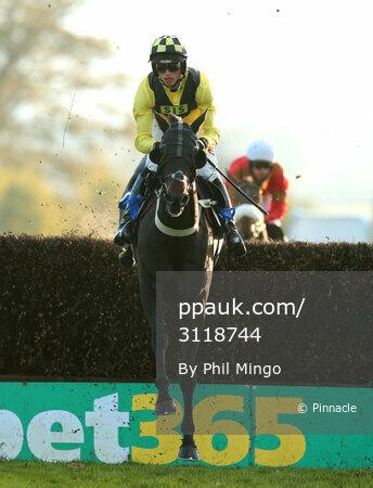Taunton Races, Taunton, UK - 1 Nov 2017