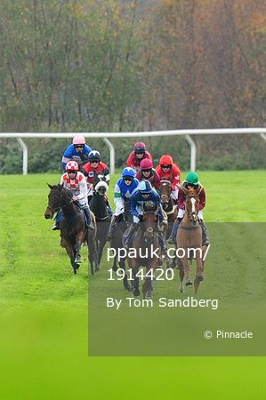 Taunton Races, Taunton, UK - 1 Nov 2017