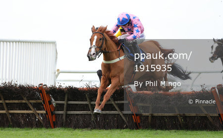 Wincanton Races, Wincanton, UK - 20 Oct 2017