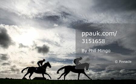 Wincanton Races, Wincanton, UK - 20 Oct 2017
