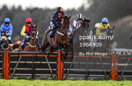 Exeter Races, Exeter, UK - 11 Feb 2018